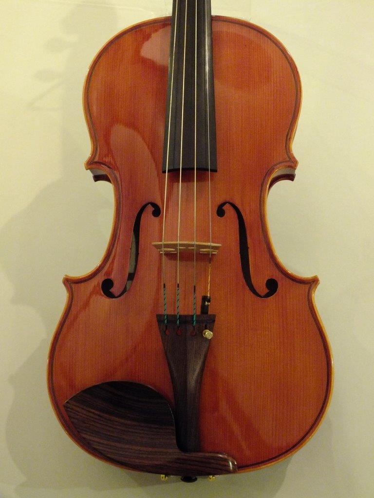 Pygmalius Viola (新古品)